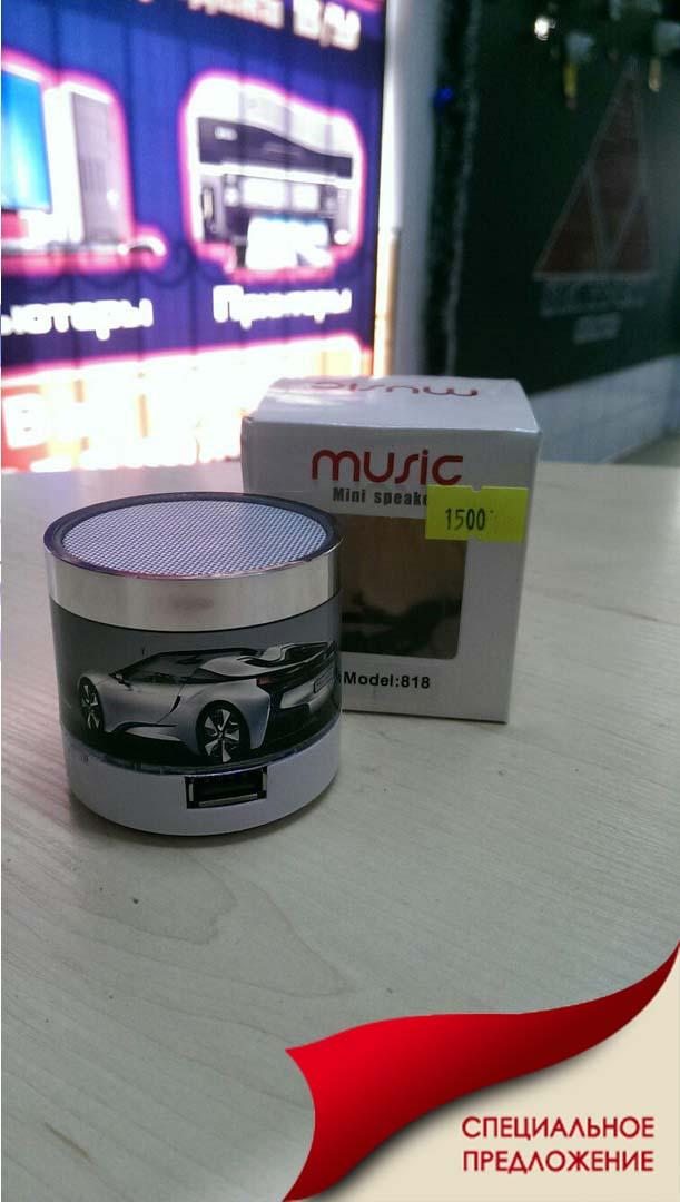 Музыкальные колонки MINI speaker T-818